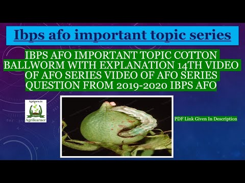 IBPS AFO Important Topic Cotton Ball-worm With Explanation 14th Video Of AFO Series