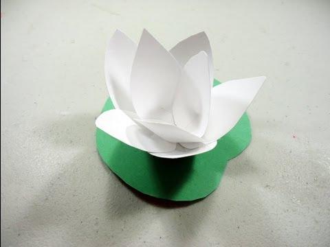 Como hacer una flor de loto  YouTube