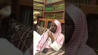My favorite recitation ever, from sheikh Abdullah Al Matrood.