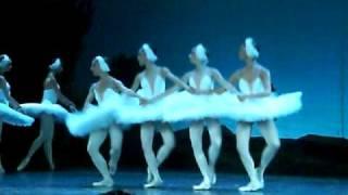 П.И.Чайковский. Танец маленьких лебедей