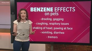 How Benzene can affect people and pets