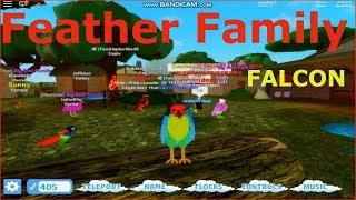 Feather Family 🦅 FALCON ROBLOX | Explore the world of BIRD
