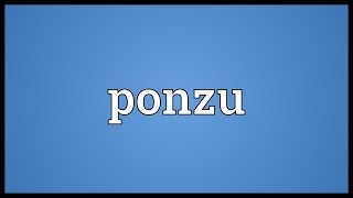 Ponzu Meaning