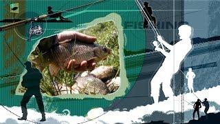 Ловля крупного карася на водохранилище. Рыбалка на крупного карася.