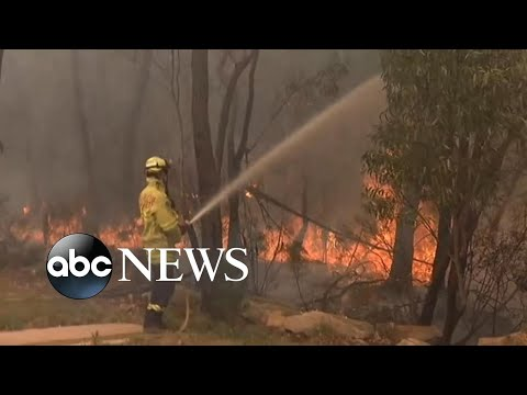 30K Ordered To Evacuate From Australia Wildfires L ABC News