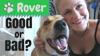 ROVER REVIEW   My Experience Using Rover as a Client