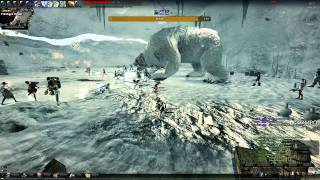 Vindictus EU [German] - VS Stribog lvl 20 Raid Boss
