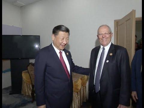 Chinese President Xi Jinping Meets Peruvian President Pedro Pablo Kuczynski in Vietnam