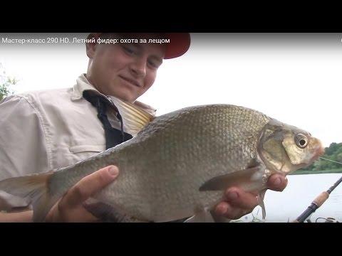 летняя рыбалка на фидер как сделать фидер