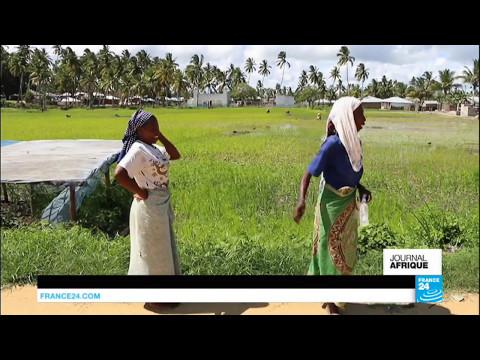 Mozambique : réserves de gaz, les perspectives de richesses s'amenuisent