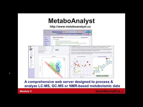 Metabolomic Data Analysis using MetaboAnalyst
