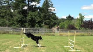 Lurk jumping