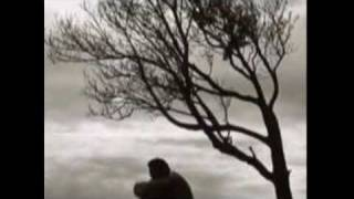 Jonny Fuori- Lady Dream
