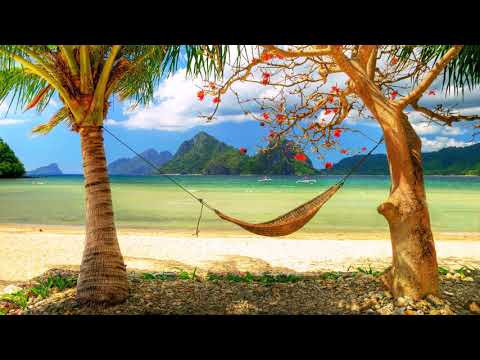 Relaxing Music, Sleep Music, Calm Music, Massage Music, Peaceful Music, Study Music