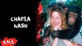 Charla Nash 2014 - YouTube