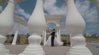 Свадьба Кошек