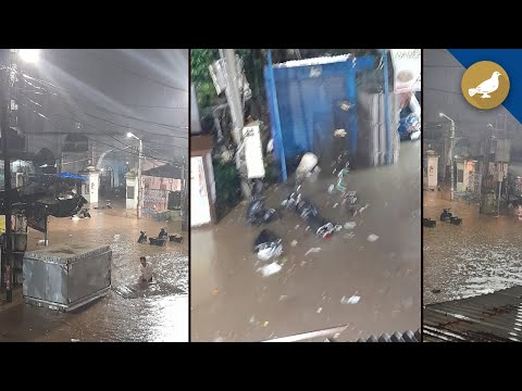 Hyderabad rains: Birds washed away at Murgi Chowk
