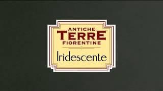 Iridescente Candis (Иридиченти). Видео урок по нанесению декоративной краски