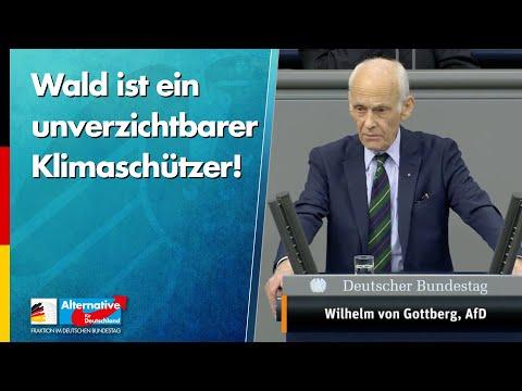 Wald ist ein unverzichtbarer Klimaschützer! - Wilhelm von Gottberg - AfD-Fraktion im Bundestag