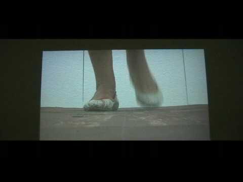 presentatie Willem de kooning Academie 2009