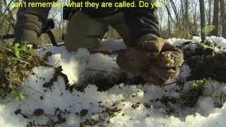 Metal Detecting: 2014 Homestead Hunting in Northern Maryland