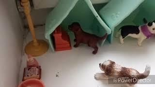 Сериал собаки шляйх( сабачаья стая номер 46) 🐩🐶