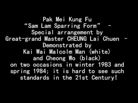 "英國白眉鄧祖德 – 文啟為、胡昌雲示範「三攬對拆」 Kai Wai Malcolm Man (white) and Cheong Wo (Black) demo ""Sam Lam Sparring"""