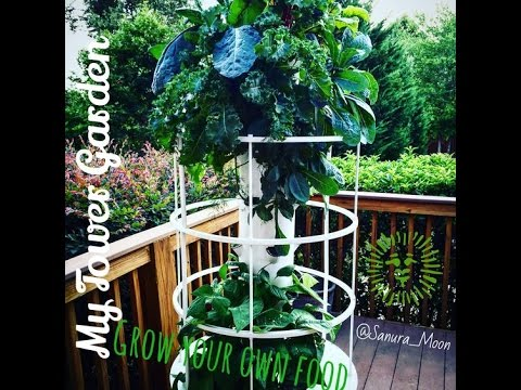 Grow your own organic food using Aeroponic Vertical Tower Gardens