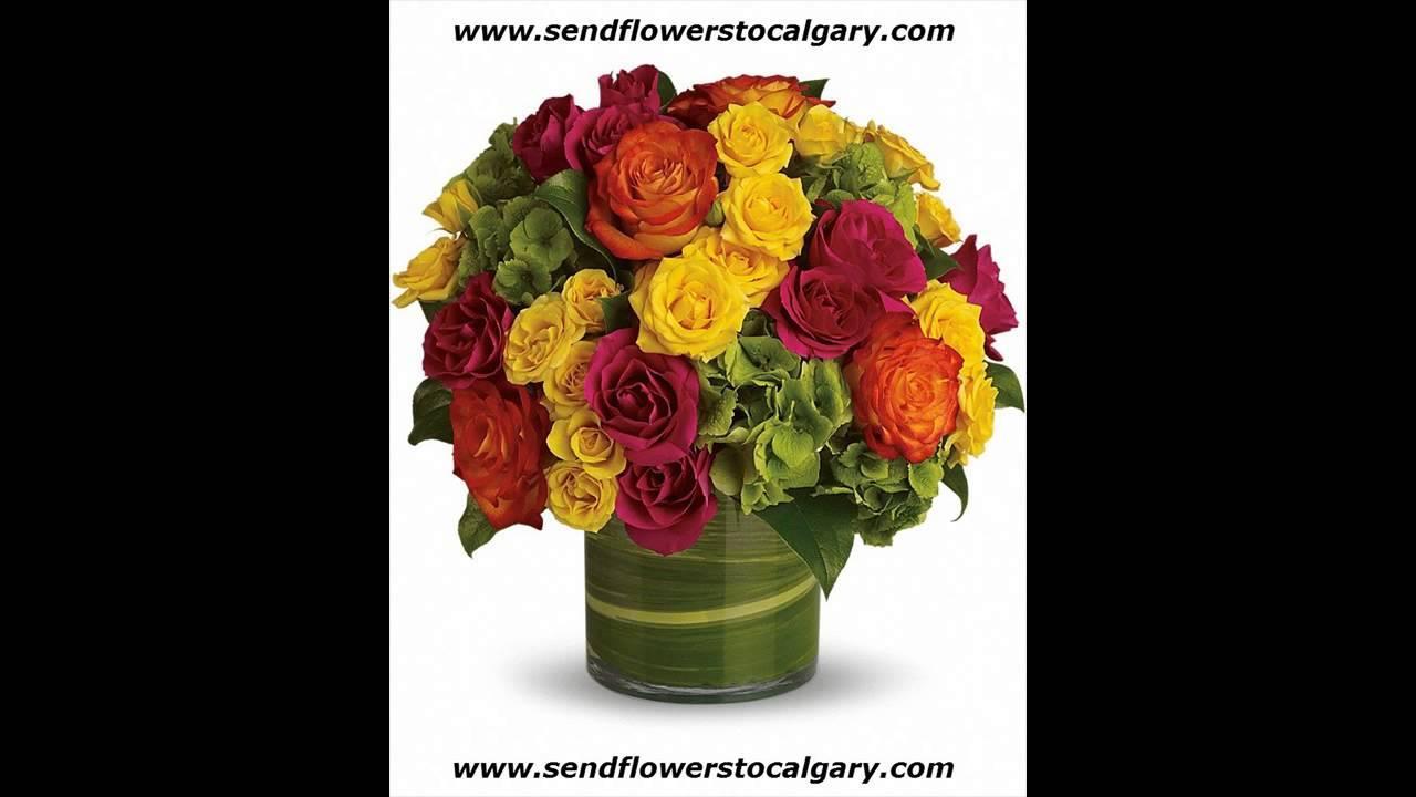 Beddington florist calgary ab youtube beddington florist calgary ab izmirmasajfo
