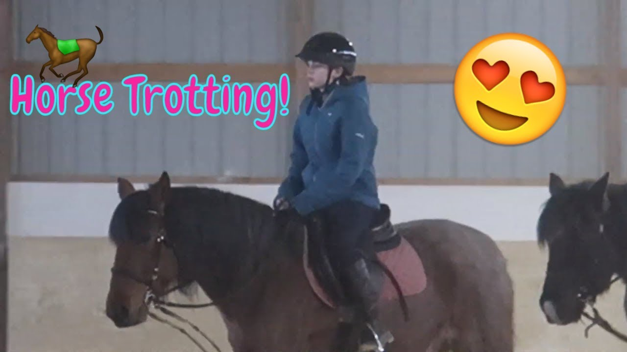 Horse Riding Lessons! ?Come Ride With Me!?FIRST DAY TV
