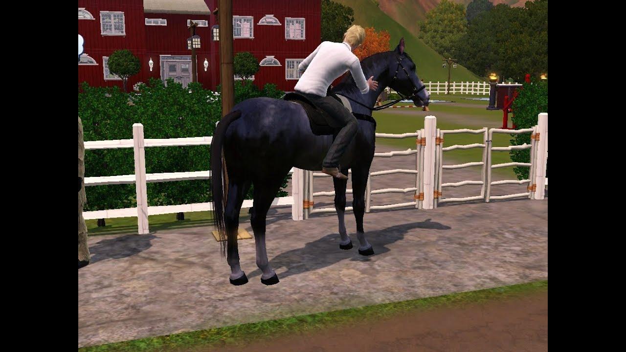 Haus Mit Pferdestall