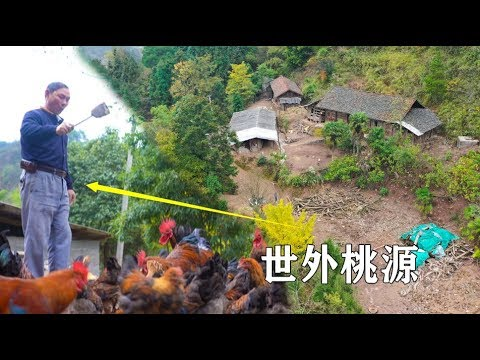 贵州发现一户人家,常年隐居深山过着养鸡种菜的生活,世外桃源