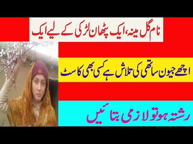 Today Zaroorat Rishta For Phathan Girl Detail in Urdu And And Hindi.