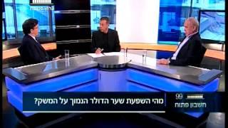 ערוץ הכנסת - שער הדולר הנמוך, 19.5.14