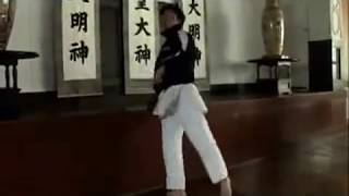 JKA   Japan Karate Association   日本空手協会 thumbnail