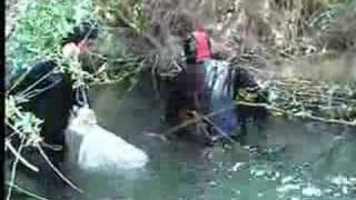 balık böyle yakalanır 3