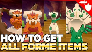 How To Get AĻL FORME Changing Items in Pokemon Sword & Shield DLC Crown Tundra