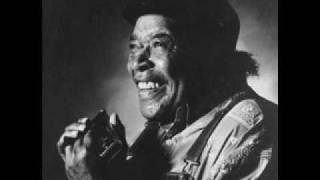 James Cotton -  Don