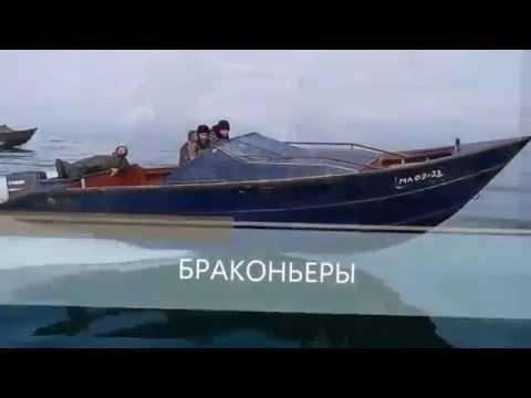 Каспийские байды.2015