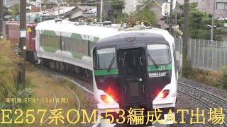 EF81-134+E257系OM-53編成AT出場