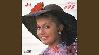 Gambar cover Hamsafar