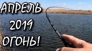Весна прийшла - Рибалка ВОГОНЬ!) Ловля злого хижака!