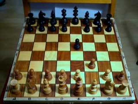 The Shortest Chess Game - YouTube