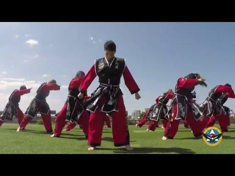 Martial Arts - Hapkido College of Australia: Eagles Trailer 2016