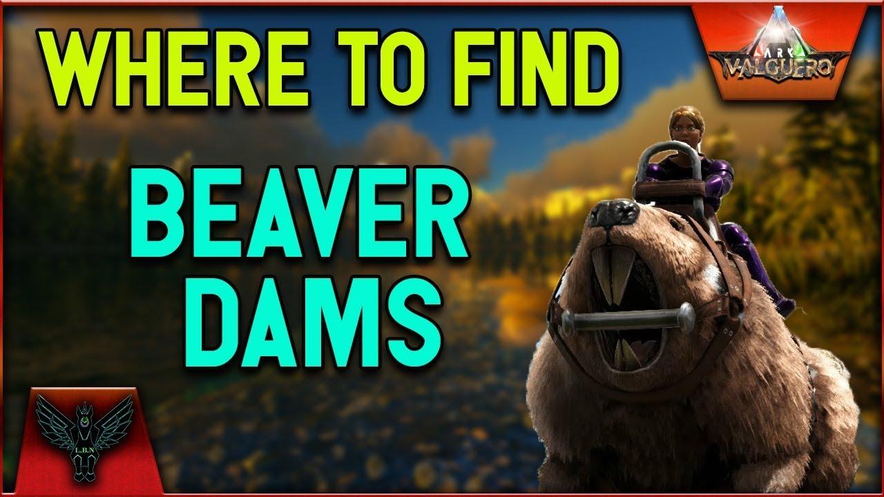 """Ark Survival Evolved """" Beaver Dams explained"""" - YouTube   Ark Beaver Dam"""