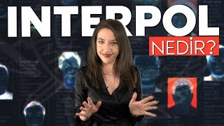 Interpol nedir?