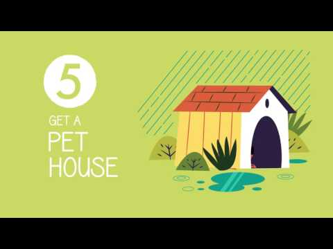 :::Pet Proof Garden - animated videographic:::