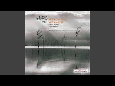 concerto-for-2-violins-in-d-minor,-bwv-1043:-ii.-largo-ma-non-tanto-in-d-minor