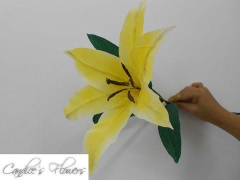 Hướng dẫn làm hoa Ly bằng giấy nhún