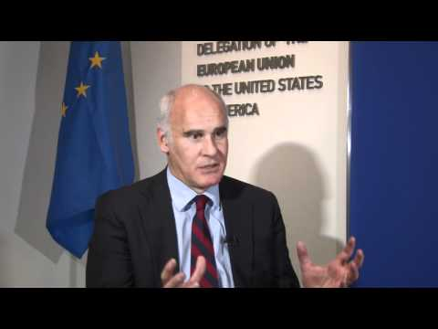 EU Ambassador to US on China-EU Relations